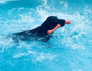 gypsy swimming